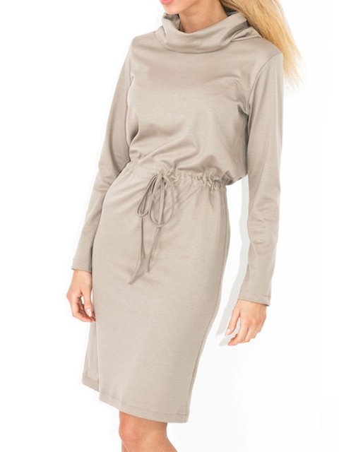 Solid Daily Elegant Elegant Women Dress shift Turtleneck Long Sleeve Hp44wq