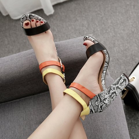 Snakeskin Buckled Chunky Heeled Color Band Sandals