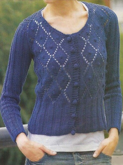 Blue Casual Jacquard Sweater