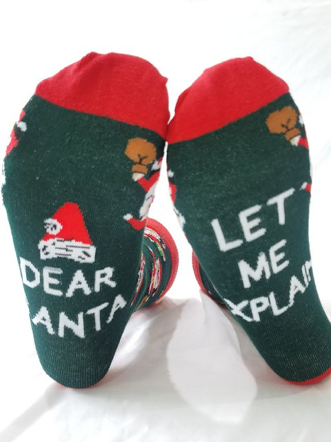 Santa Letter Printed Adult Christmas Socks