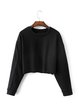 Crew Neck Solid Simple Crop Sweatshirt