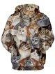 Multicolor Cute Cat Printed Long Sleeve Hoodie