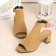 Chunky Heel Dress Buckle Strap Suede Sandals