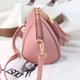 Ladies Retro Tassel Decoration Stylish Crossbody Bag