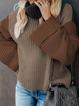 Casual Basic Turtleneck Color-Block Shift Sweater