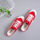 Summer Shallow Mouth Half-Pull Canvas Shoes