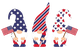 Patriotic Gnomes Tee